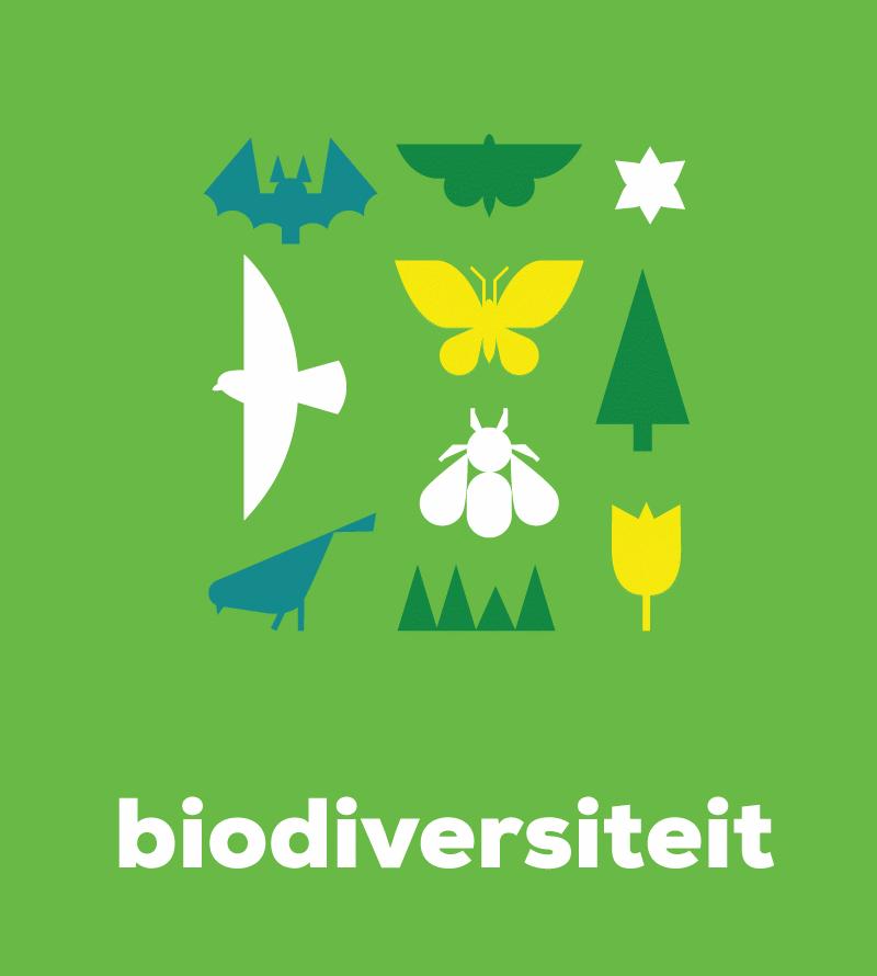 Banner biodiversiteit